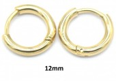 F-D20.2 E1934-003 S. Steel 12mm Hoop Gold