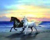 Q-D2.1 X053 Diamond Painting Set Horses 40x30cm