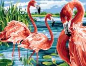 Y-C5.1 MS7573 Paint By Number Set Flamingos 50x40cm