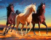 R-E4.1 RSB8423 Diamond Painting Set Horses 50x40cm