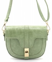 Y-E2.1 BAG006-011B PU Bag Croco 15x19x5cm Green