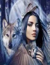 T-P3.2  H489 Diamond Painting Set  Wolf Lady Stones 50x40cm