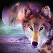 R-H3.1 Z197 Diamond Painting Set Square Stones Full Moon-Wolf 30x30cm