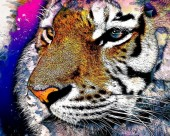 T-M2.2 GM0020 Diamond Painting Set Tiger 50x40cm