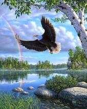 Q-F6.2  S147 Diamond Painting Set Rainbow-Eagle  50x40cm