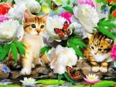 Q-D2.2 S280 Diamond Painting Set Butterflies-Kittens 50x40cm
