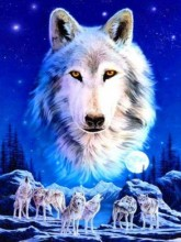 Q-A6.2 GS282 Diamond Painting Set Wolfpack 50x40cm