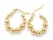 D-A6.3 E301-003 Stainless Steel Earrings 2cm Gold